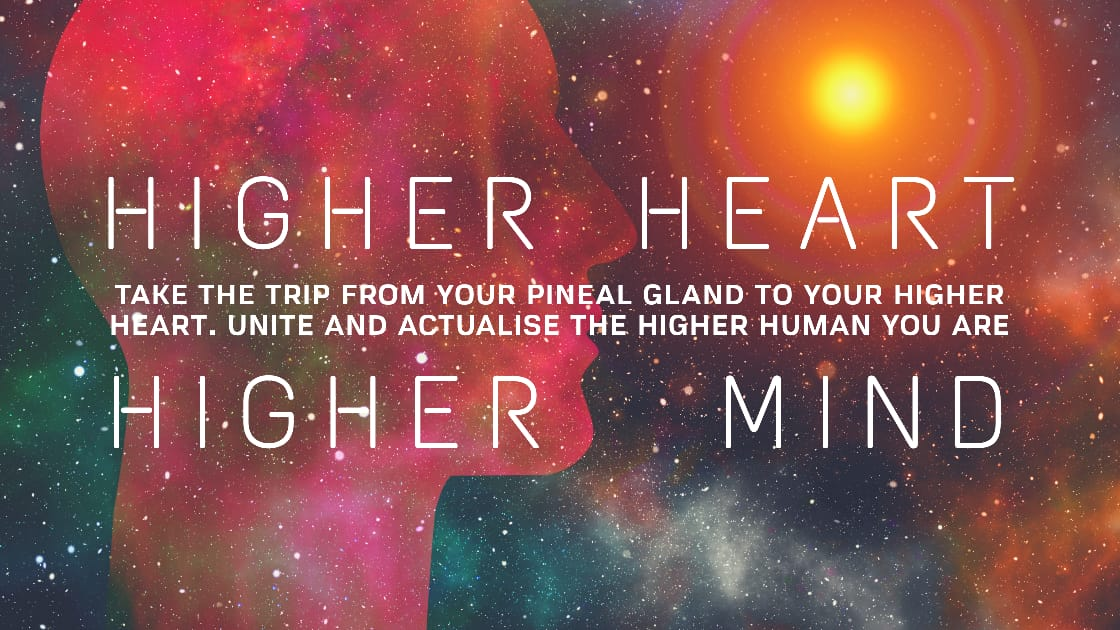 The Pineal Gland And Heart Connection