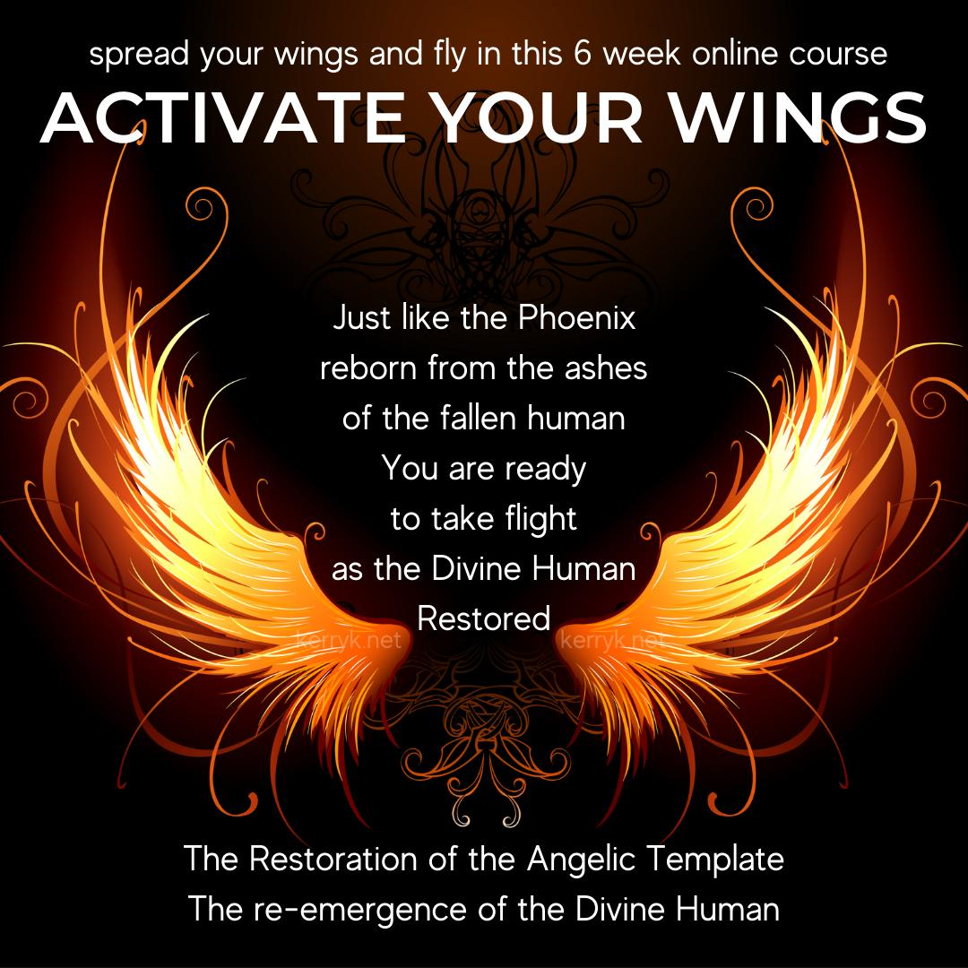 activate your wings
